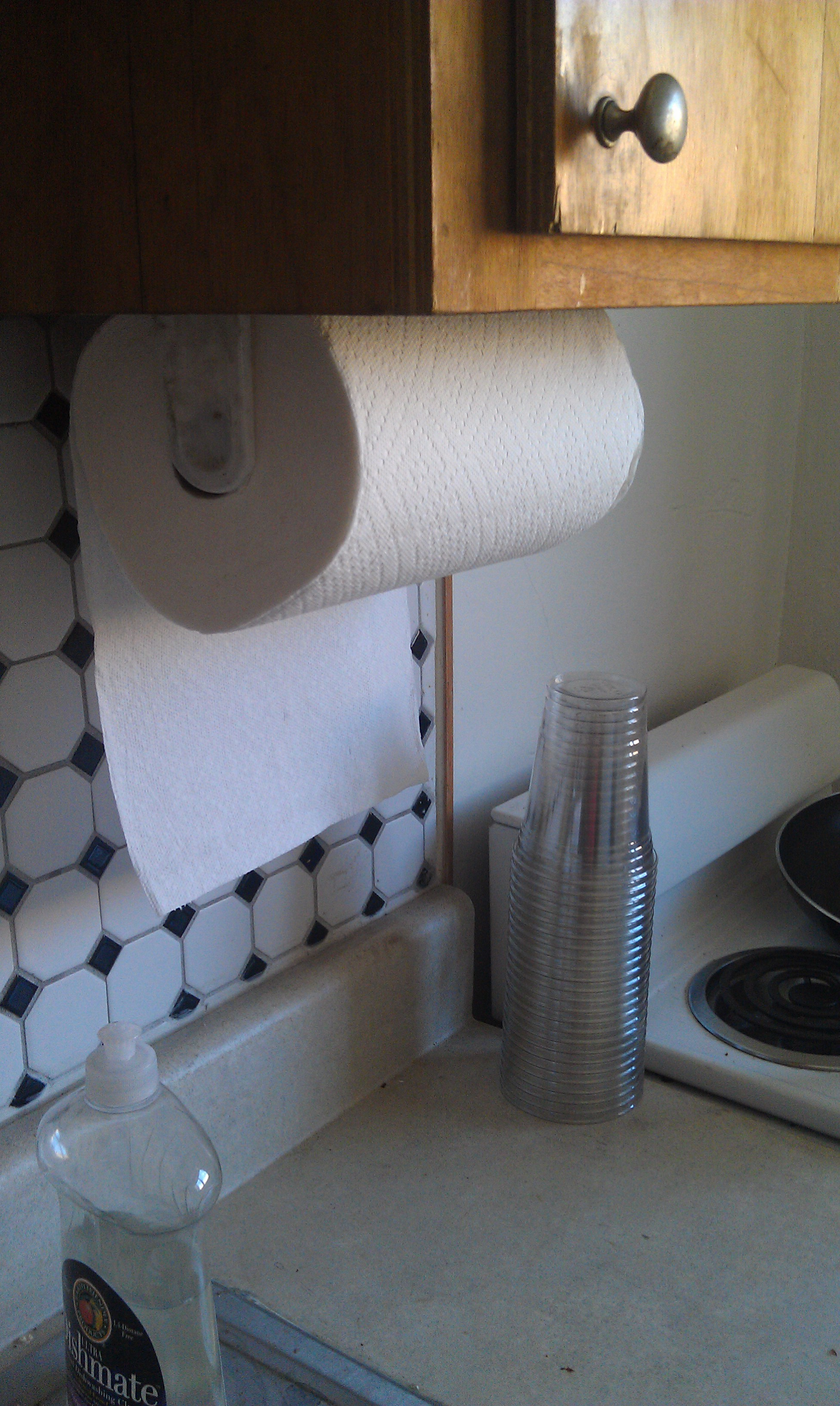 Huge Roll of Paper Towels