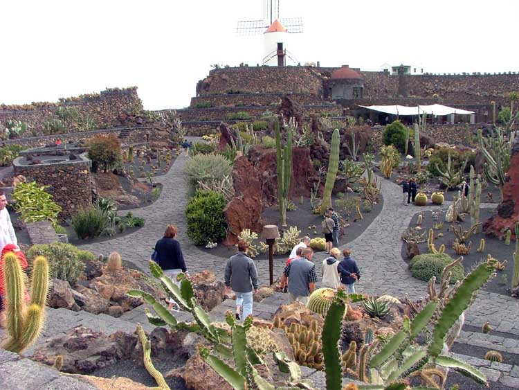The coolest island you 39 ve never heard of lanzarote for Jardin cactus lanzarote