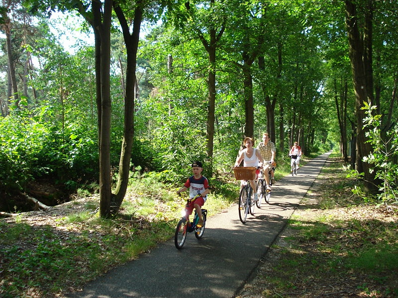 cycling pathways in the Netherlands