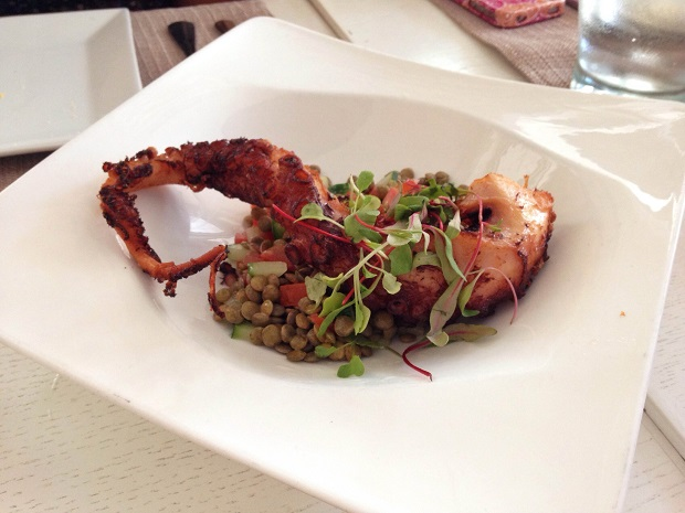 grilled octopus, the local house in Miami Beach