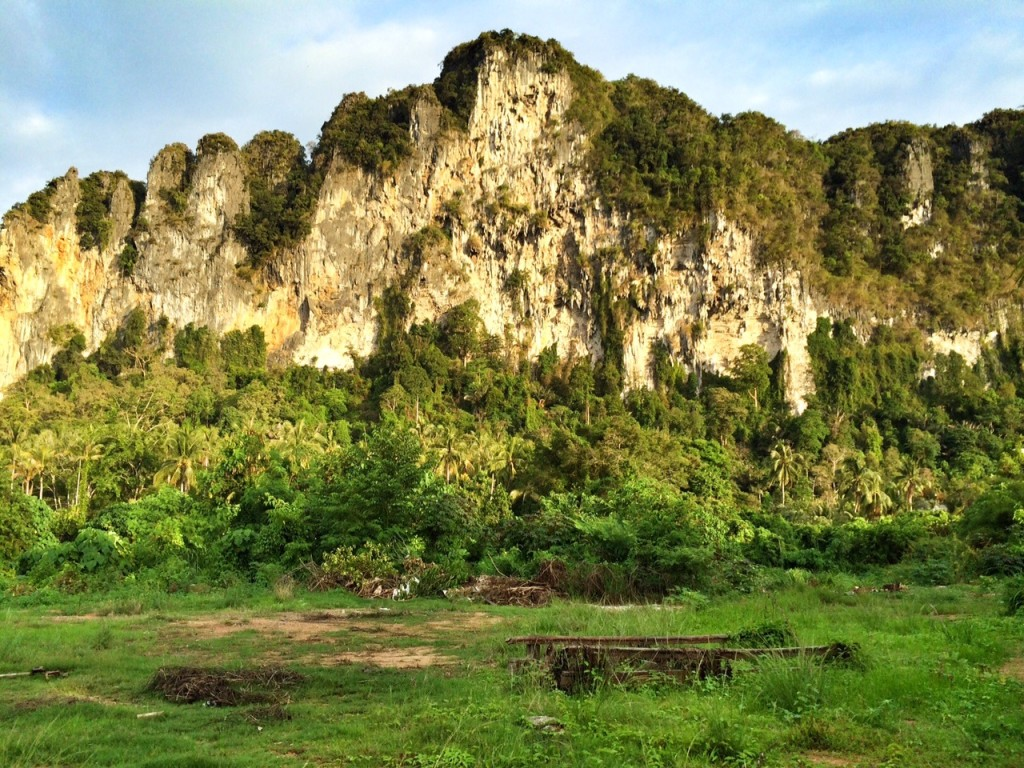limestone karst clifs in Krabi