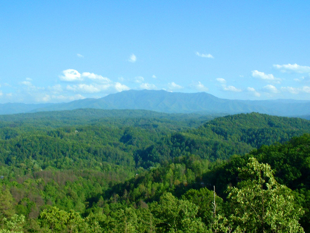 The Smoky Mountains are an amazing place to visit in the summer ... photo by CC user Mountain Vacation Resorts on wikimedia