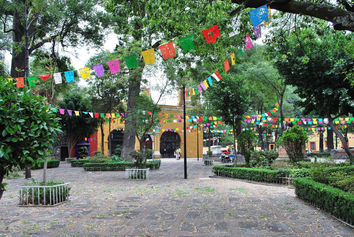 beautiful plaza in the best neighborhood in Mexico City Coyoacan