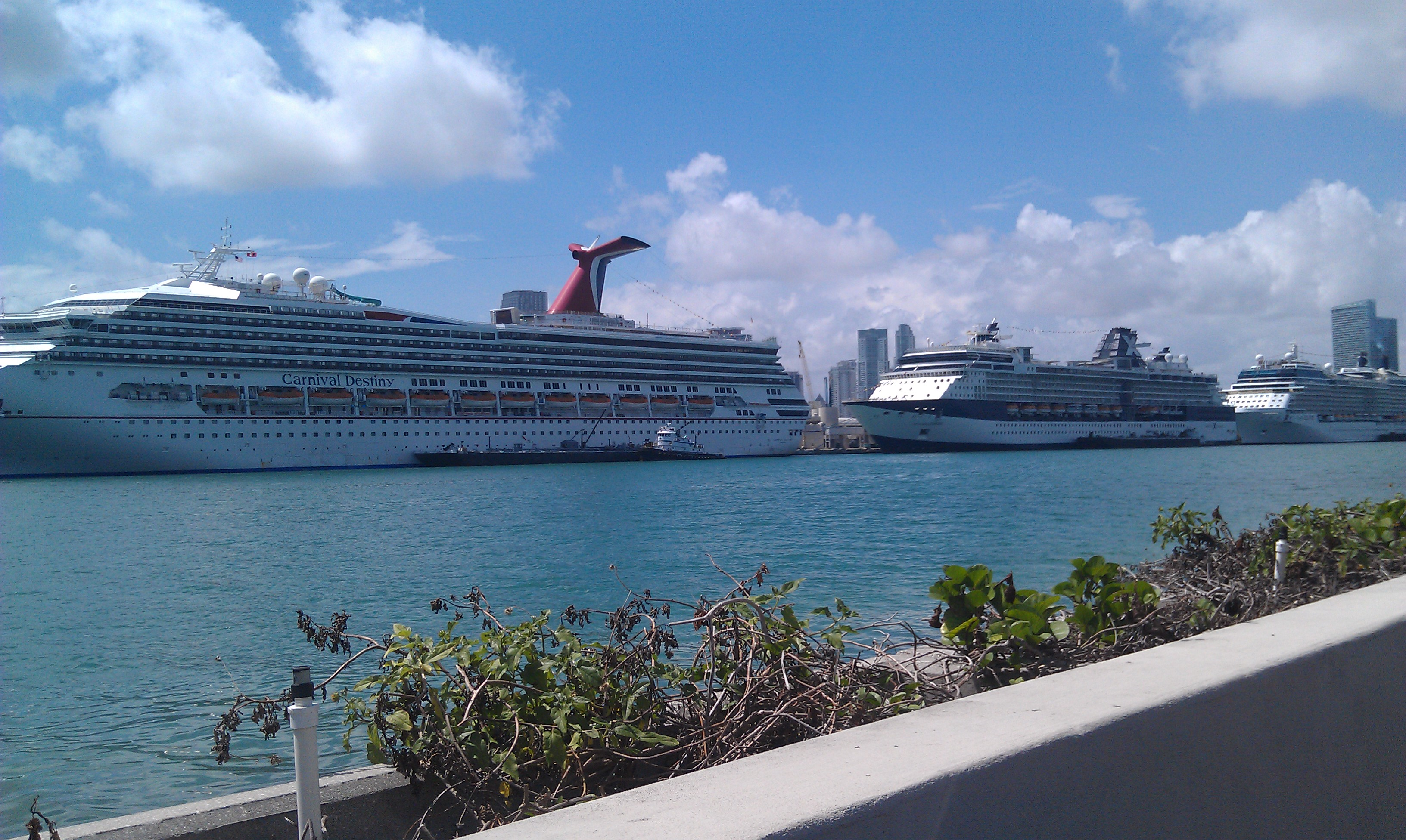 The Cruise Ships at the Port of Miami