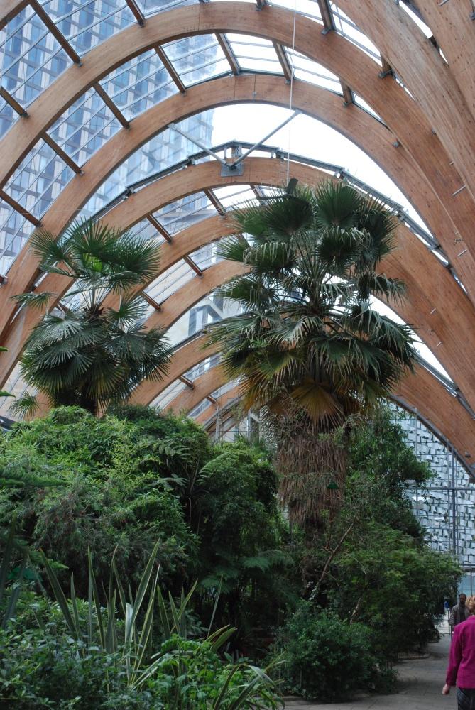 Inside the Winter Gardens