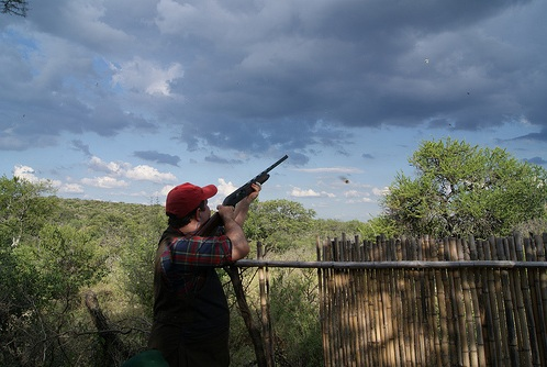 Dove shooting in Argentina