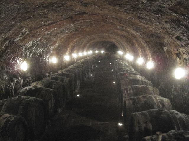 wine cellar in Slovakia