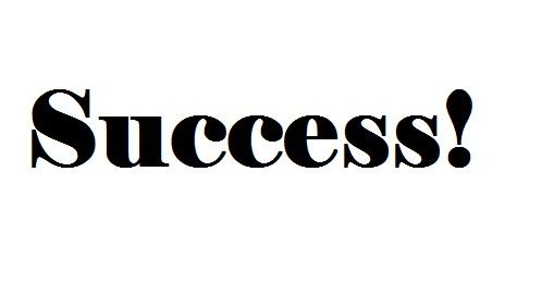 travel success