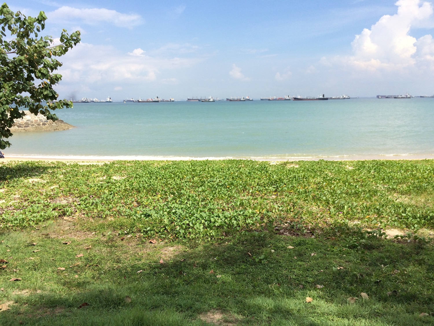 beach near the airport in Singapore