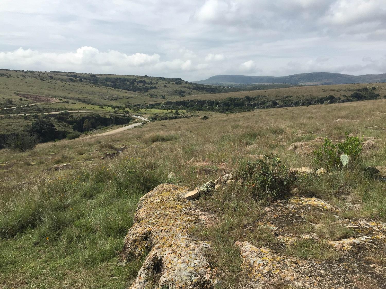 landscape in Guanajuato