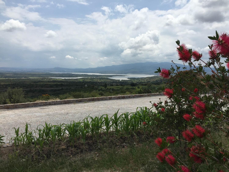 terrain in Guanajuato